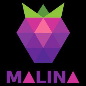 Онлайн казино Малина логотип
